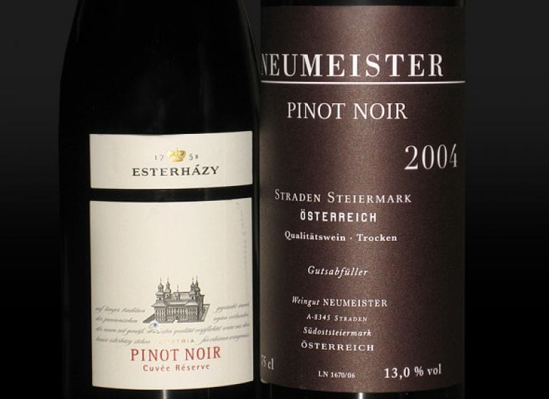 2009 pinotnoir 01